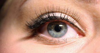 How To Put on Fake Eyelashes Without Glue
